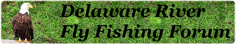 Delaware River Fly Fishing Forum
